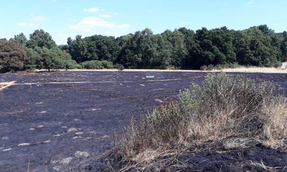 Petersfield heath fire 18.07.15